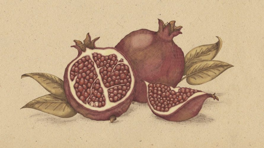 Once when I was living in the heart of a pomegranate...